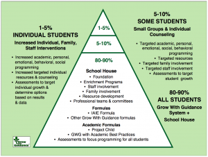 Individual Student Triangle